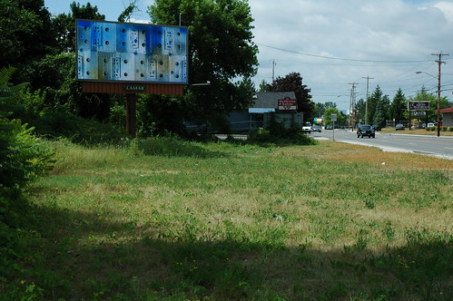 Albany Billboard Art Project 2012 - Julia Cocuzza (4)