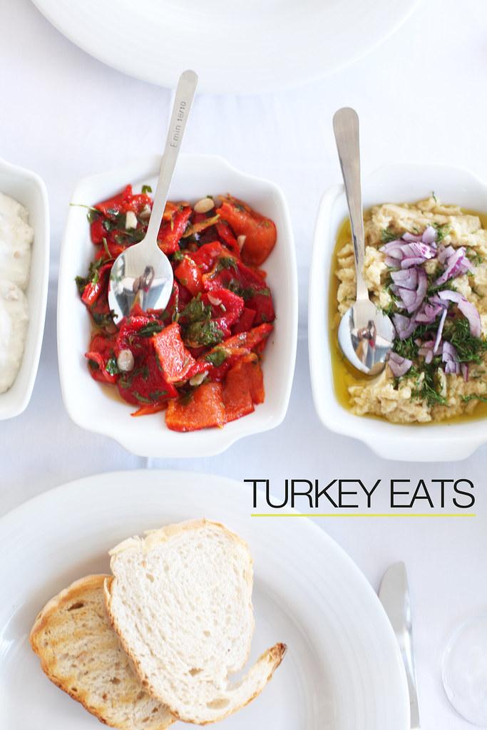 turkeyeats