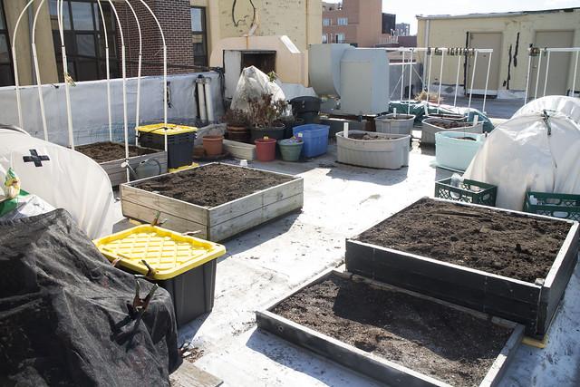 Spring Garden Cleanup March 15_16