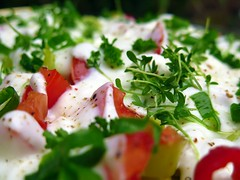 fresh salad with spring herbs