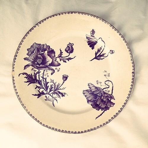 Les plus belles fleurs sont celles qui sont cueillis avec le cœur.