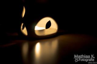 Licht im Dunkeln | Projekt 365 | Tag 85