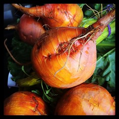 Hello, my little beauties! #goldenbeets #favorites #spring