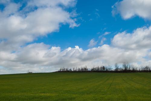 Campos y nubes