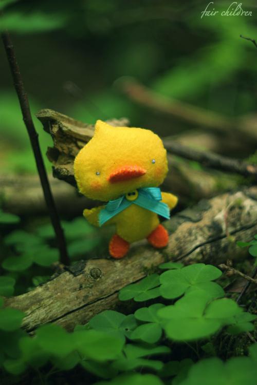 Mr. Quack