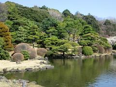 20120328小石川植物園-120