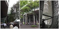 東京国際フォーラムにいます
