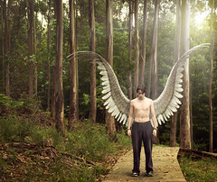 [Free Images] Graphics, Photo Manipulation, People, Men, Angel ID:201207030400