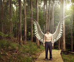 [フリー画像素材] グラフィック, フォトレタッチ, 人物, 男性, 天使・エンジェル ID:201207030400