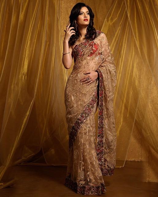 Meena Bazaar Antique Bronze Color Embroidered Net Saree