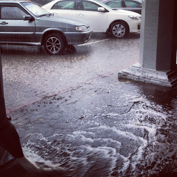 Rainy day :) меня из-под ливня спассла волшебница @oligo777