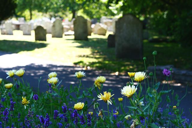 chch-cemetery