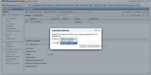 Elastic IP Associate