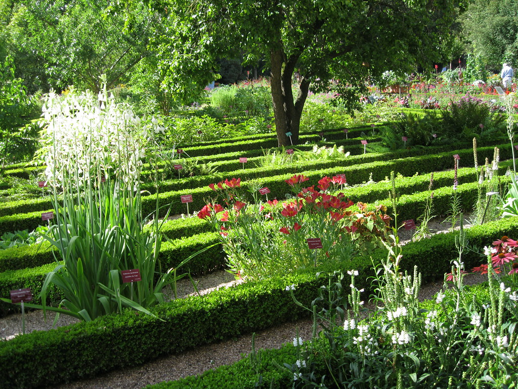 Jardin dominique alexandre godron nancy wanderant for Alexandre jardin citations