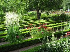 woodland(0.0), meadow(0.0), botanical garden(1.0), backyard(1.0), shrub(1.0), flower(1.0), garden(1.0), grass(1.0), yard(1.0), landscaping(1.0), lawn(1.0),