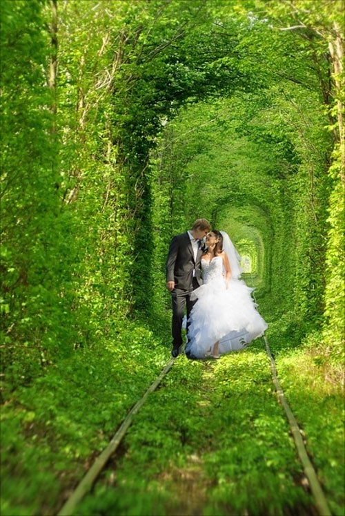 Tunnel of love in Rovno Ukraine
