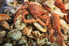 spiny lobster(0.0), crab boil(0.0), seafood boil(0.0), fish(0.0), dungeness crab(0.0), homarus(0.0), food(0.0), american lobster(0.0), crab(1.0), animal(1.0), crustacean(1.0), seafood(1.0), invertebrate(1.0), fauna(1.0), soft-shell crab(1.0),