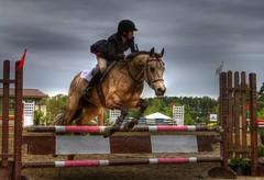 Horses - Long Leaf Pines Horse Trials