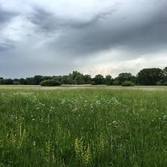 #delta #munchhausen #sauer #nature #alsace