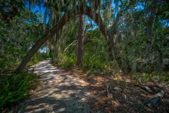 Perico Preserve Path