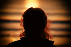 backlighting, sunlight, sun, light, silhouette, morning, darkness, sunset,