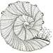 Spiralicous 1 by SharonAnn53