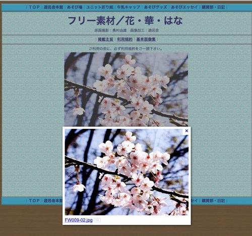 Google 画像検索結果_ http___yuuyuusya.web.fc2.com_hana-sozai_FW009-02