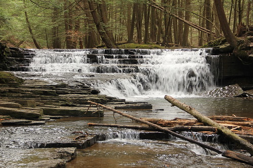 waterfall pennsylvania saltspringsstatepark susquehannacounty