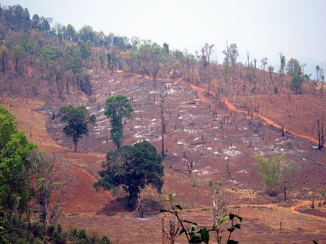 Deforestation in Hills Near Hsipaw