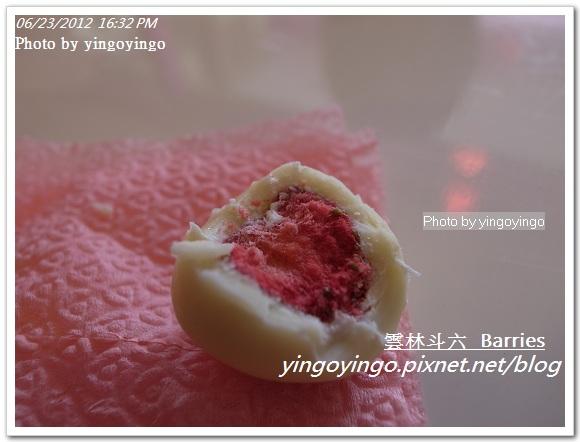 雲林斗六_Barries20120623_R0070003