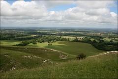 The South Downs near Plumpton