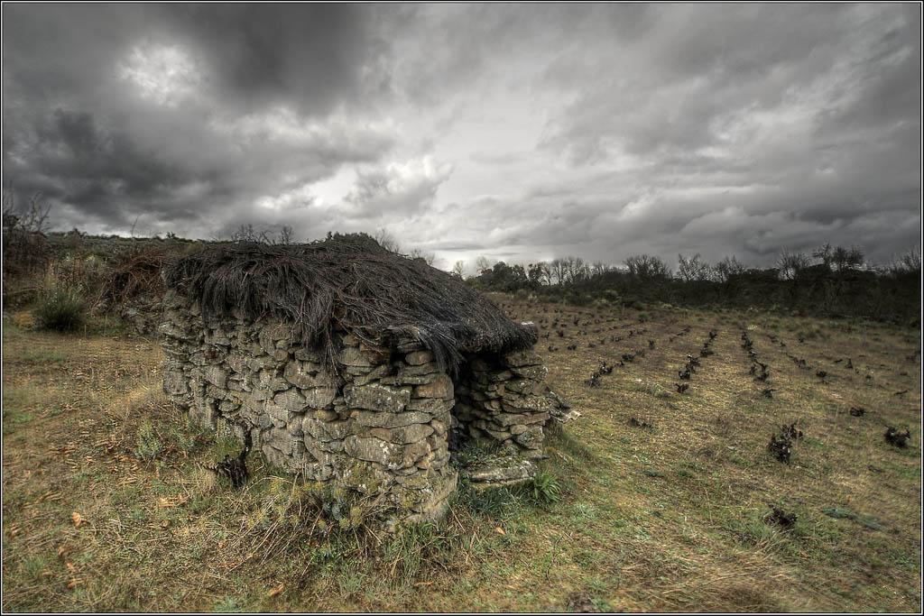 Chozo y viña - La Alberguería de Argañán (Salamanca)
