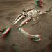 Dead Facehugger by fksr