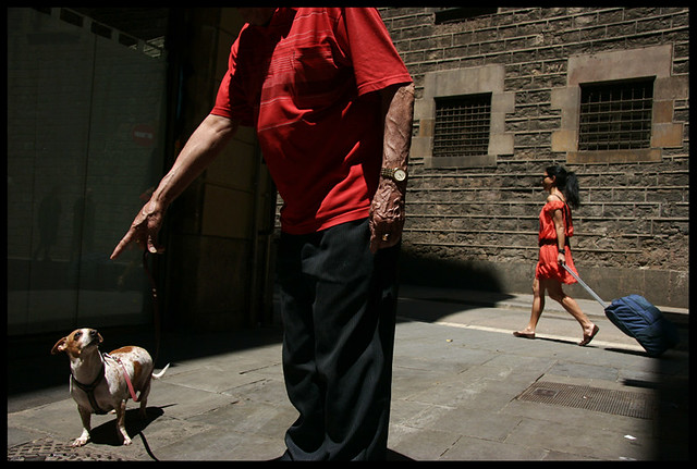 The man and his dog - Animals in Streets