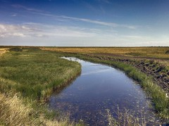 [フリー画像素材] 自然風景, 河川・湖, 草原・草, 風景 - イギリス ID:201207291200