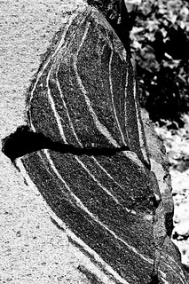 Rock striations (B&W)
