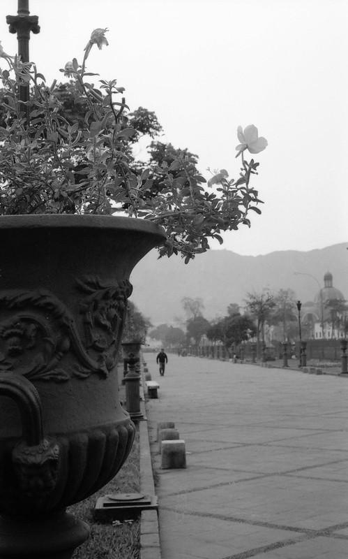 Fotografía convencional, Lima en rollo: La Alameda de los Descalzos.