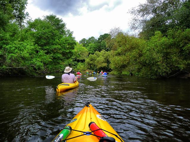 Edisto River 2