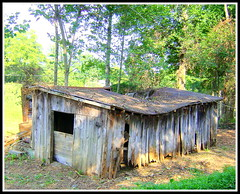 Old Barn, Traphill NC, Wilkes County