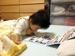 寝る前にパンフレット見入る (2012/11/4)
