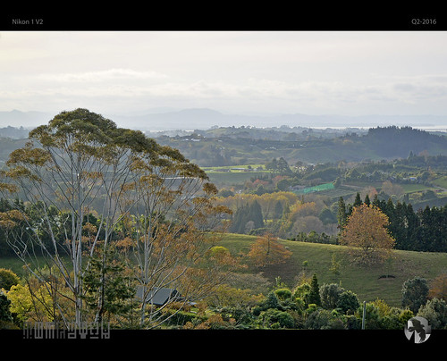 autumn trees landscape vista fields v2 orchards bayofplenty nikon1 tomraven aravenimage q22016