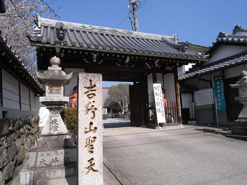 吉野の桜2011@吉野山-22