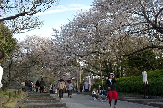 2012-kyushu-267