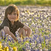 Aiden & Bluebonnets