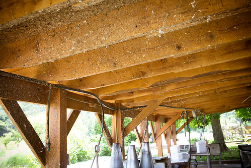 Polyface Farm 2012-0142.jpg