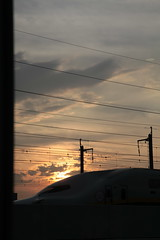 夕陽を浴びて行く新幹線E4系