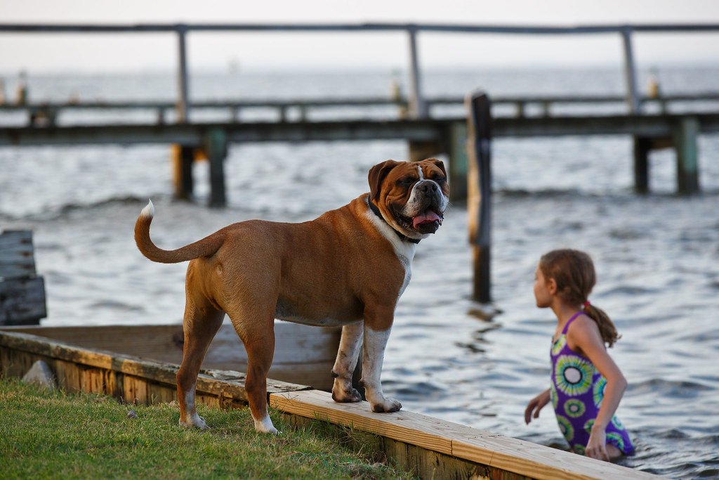 Bully @ Currituck Sound