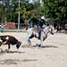 Vaqueros Dominicanos