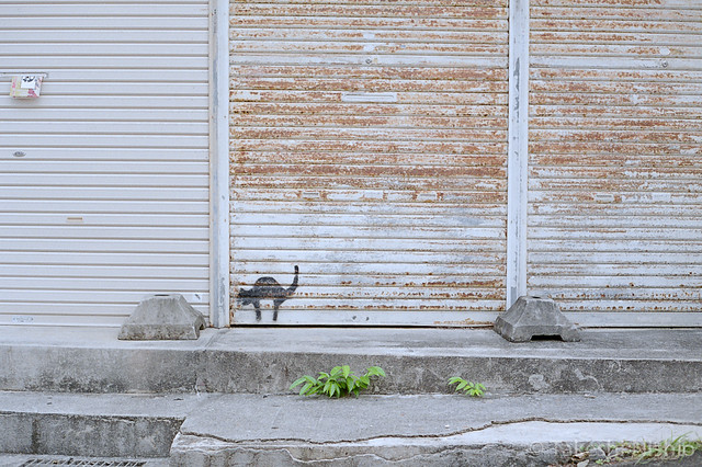 シャッターにも猫 / Cat painted on the shutter