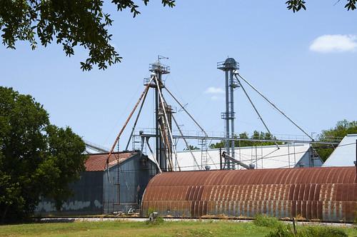 texas elgin bastropcounty elgingrainfeed